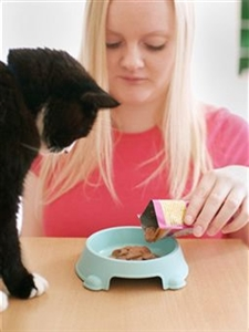 Proper Nutrition for Your Pets